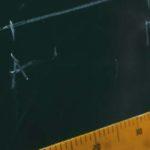 Höhenverstellbare Nackenkissen: Tipps und Empfehlungen